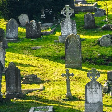 Cemetery Records Software